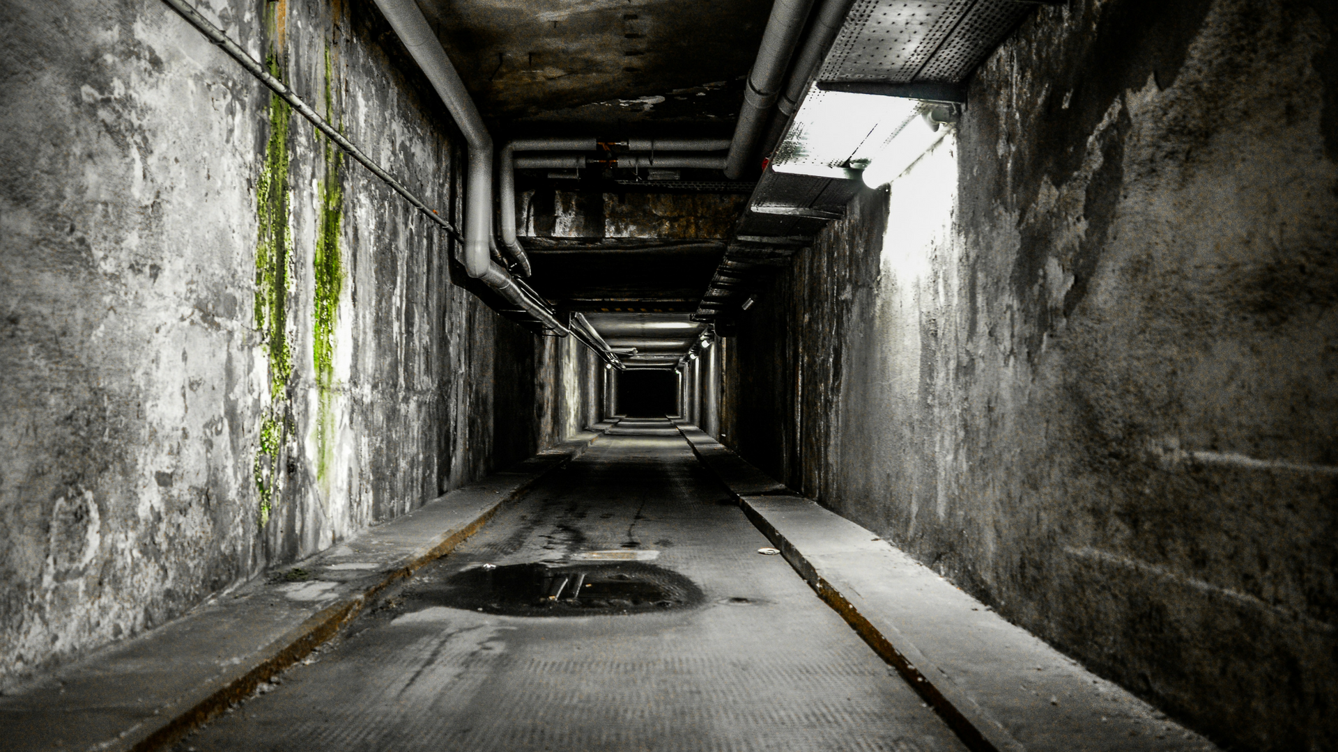 Trauma Survival Guide: Part 1 – Introduction to PTSD